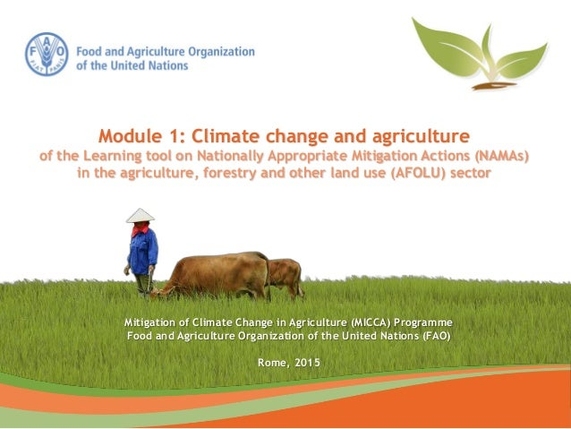 Mitigation of Climate Change in Agriculture (MICCA) Programme Food and Agriculture Organization of the United Nations (FAO...