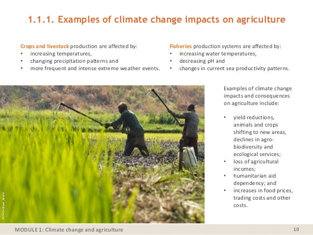 MODULE 1: Climate change and agriculture 1.1.1. Examples of climate change impacts on agriculture 10 Crops and livestock p...