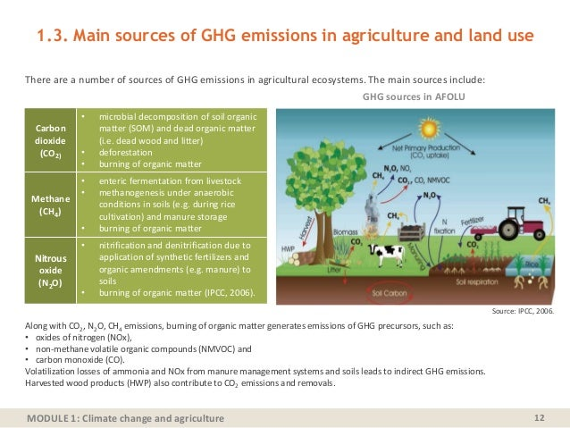 MODULE 1: Climate change and agriculture 1.3. Main sources of GHG emissions in agriculture and land use There are a number...