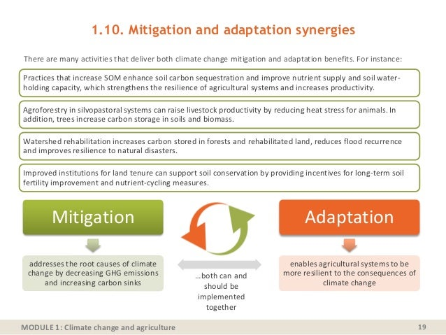 MODULE 1: Climate change and agriculture There are many activities that deliver both climate change mitigation and adaptat...