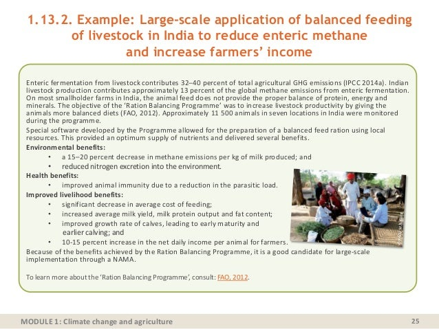 MODULE 1: Climate change and agriculture 1.13.2. Example: Large-scale application of balanced feeding of livestock in Indi...