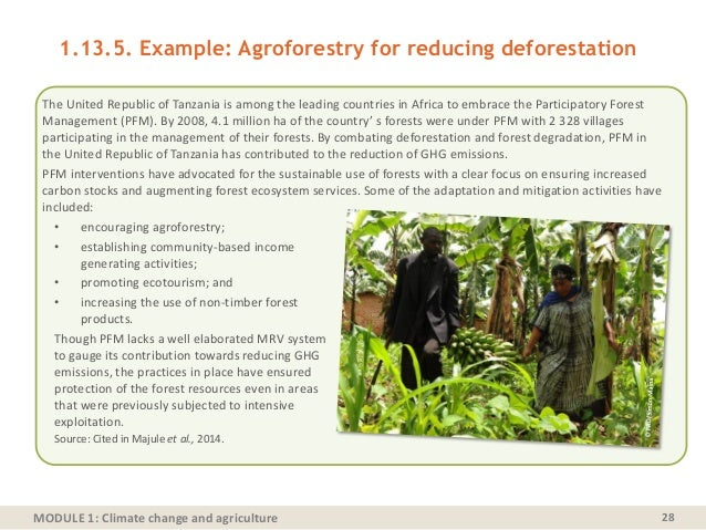 MODULE 1: Climate change and agriculture 28 1.13.5. Example: Agroforestry for reducing deforestation The United Republic o...