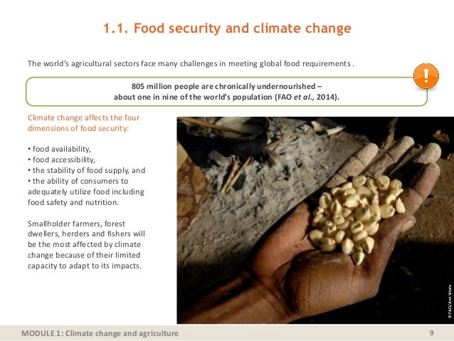 MODULE 1: Climate change and agriculture The world's agricultural sectors face many challenges in meeting global food requ...