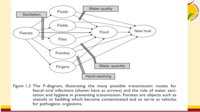 • Prevention and control 1. Treatment of patients and carriers 2. Education on handwashing, particularly food handlers, pa...