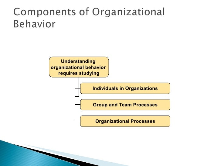 organizational behavior 15e module 1 notes Download the full file instantly at organizational behavior, 15e (robbins/judge) chapter 1 what is organizational behavior 1) _____ are defined as people who oversee the activities of others and who are responsible for attaining goals in organizations a) assistants b) managers c) secretaries d) interns e) apprentices answer: b explanation: b) managers are defined as people who oversee the.
