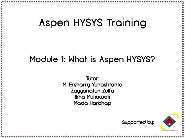 aspen hysys 7.3  crackinstmank