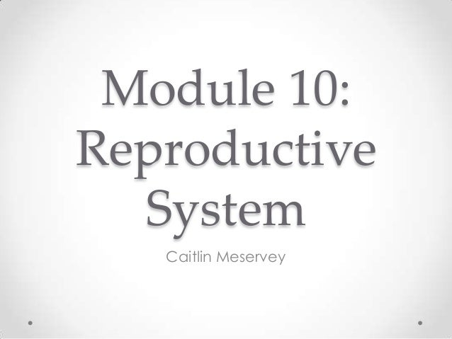 reproductive system module The male reproductive system is a complex system unlike the female system, the male reproductive organs, also known as genitales.