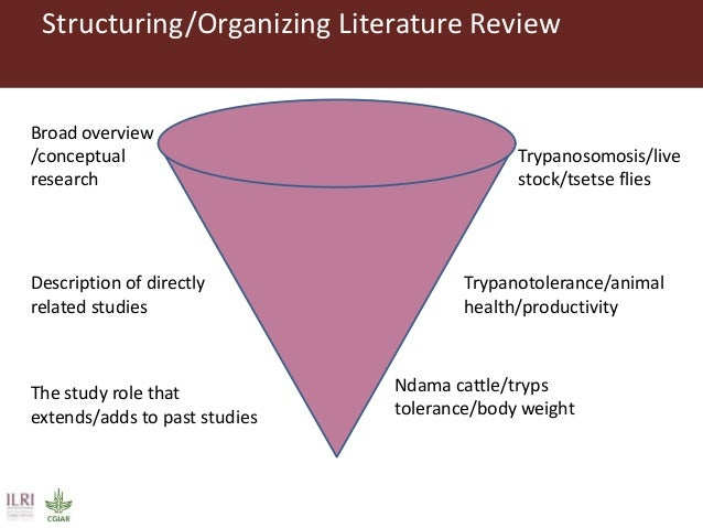 literature review how to organize