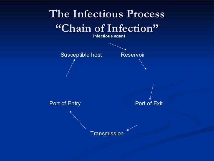 infection control in dentistry pdf