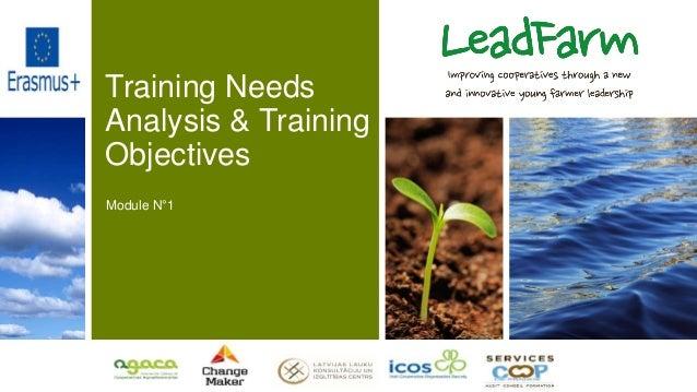 Training Needs Analysis & Training Objectives Module N°1