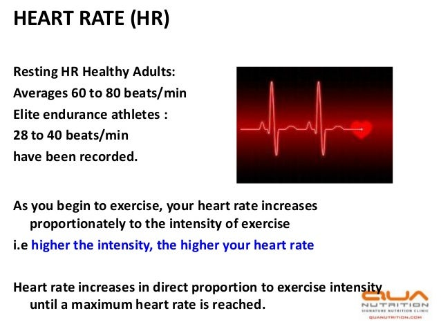 pulse rate coursework Free breathing rate papers, essays, and research papers.