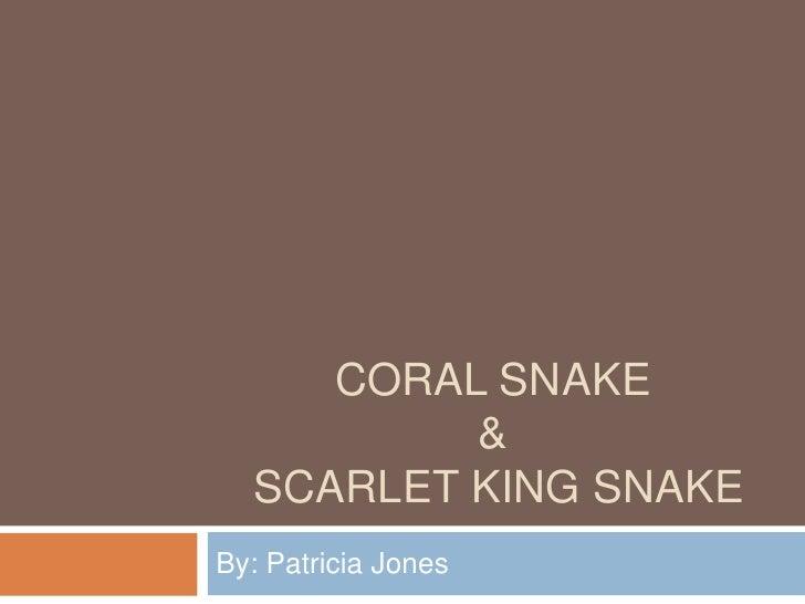CORAL SNAKE           &   SCARLET KING SNAKE By: Patricia Jones