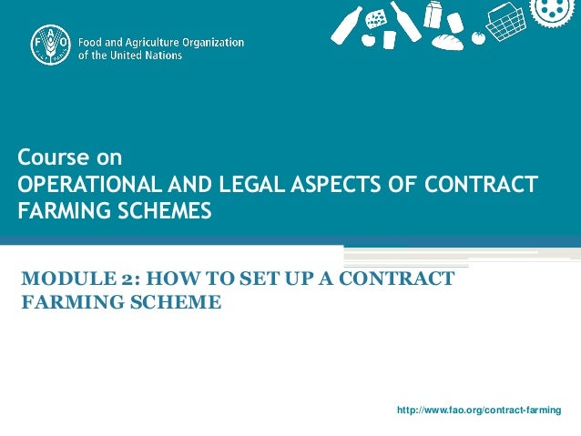 Module 2 How To Set Up A Contract Farming Scheme