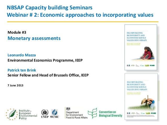 1Webinar series. Module 4. 7th June 2013NBSAP Capacity building SeminarsWebinar # 2: Economic approaches to incorporating ...