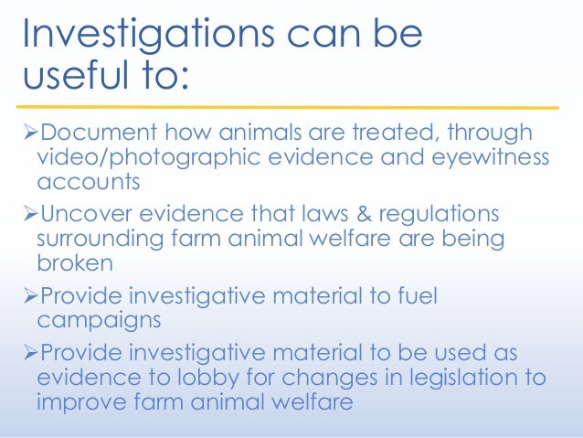 Investigations can be useful to: Document how animals are treated, through video/photographic evidence and eyewitness acc...