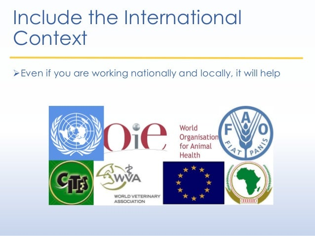 Include the International Context Even if you are working nationally and locally, it will help