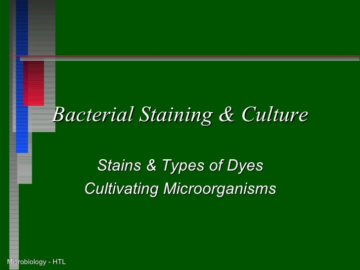 Bacterial Staining & Culture                      Stains & Types of Dyes                     Cultivating MicroorganismsMic...