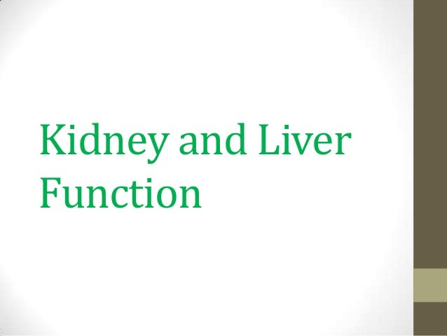 Kidney and Liver Function