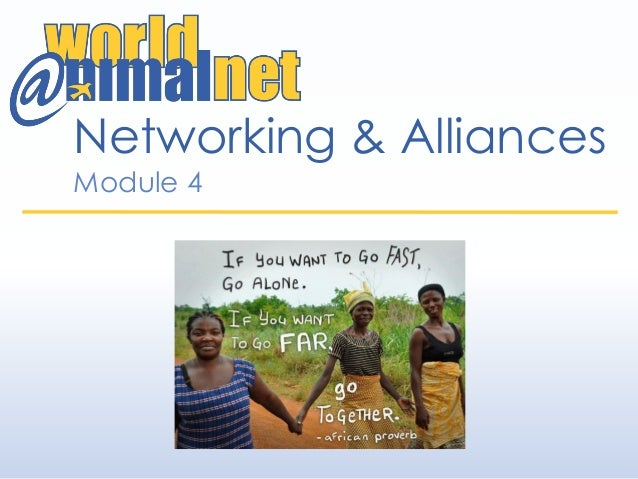 Networking & Alliances Module 4