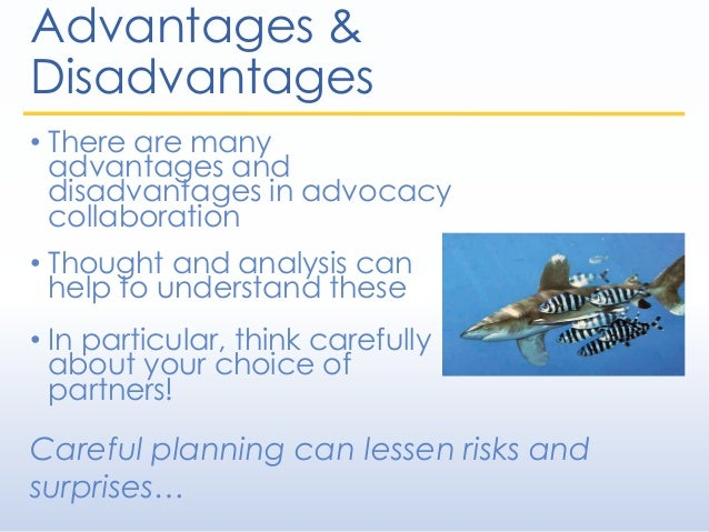 Advantages & Disadvantages • There are many advantages and disadvantages in advocacy collaboration • Thought and analysis ...