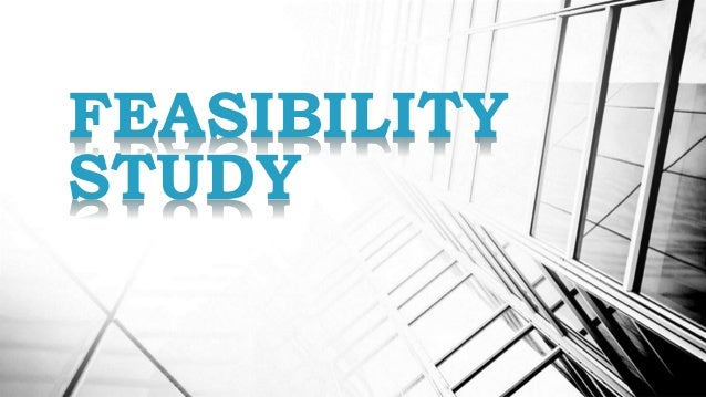 feasibility study business plan pdf