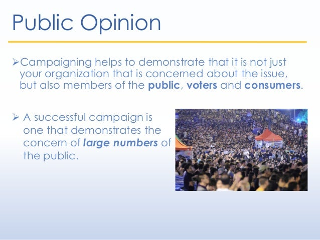 Public Opinion Campaigning helps to demonstrate that it is not just your organization that is concerned about the issue, ...