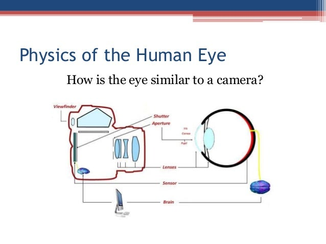 physics of the eyes Objectives: students should be able to 36 - solve problems using lens formulae 37 - discuss how the eye forms focused images of objects at different distances.