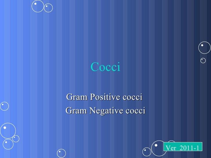 CocciGram Positive cocciGram Negative cocci                      Ver 2011-1