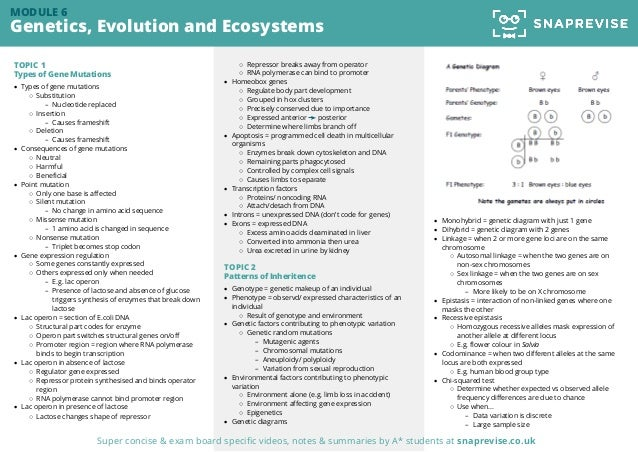 A-level OCR Biology Past Paper Summary: Genetics, Evolution