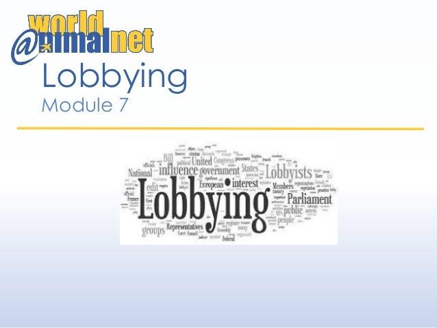 Lobbying Module 7