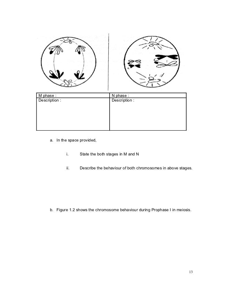 biology module 5 02 Study flashcards on apologia biology module 14 review at cramcom quickly memorize the terms, phrases and much more cramcom makes.
