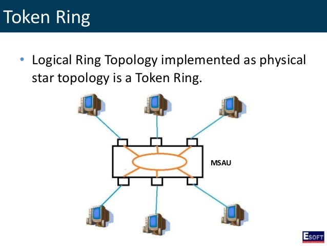 Ring Plot Structure