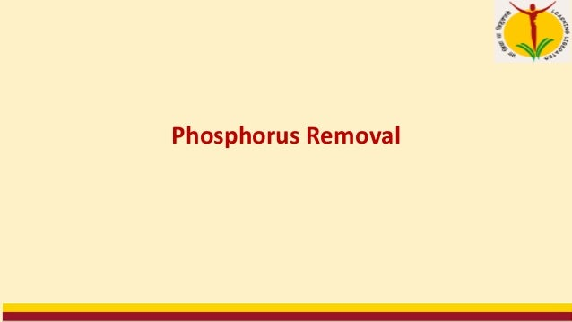 Strategies The main phosphate removal processes are (see picture): 1.Treatment of raw/primary wastewater 2.Treatment of fi...