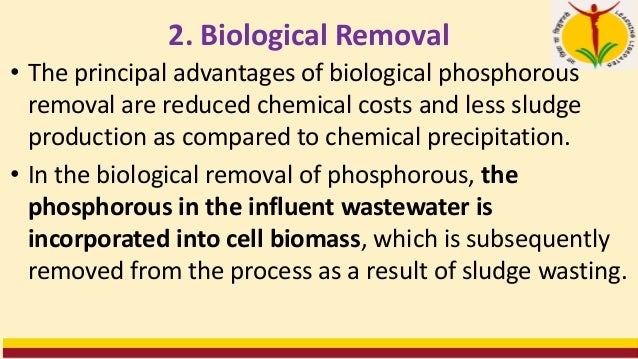 • The soluble orthophosphate is removed from solution and incorporated into polyphosphates within the bacterial cell. • PH...