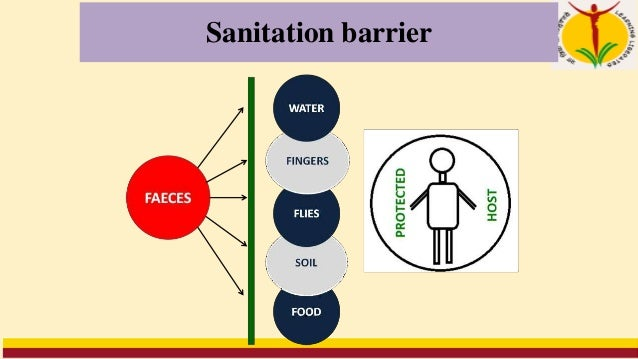 Criteria for a sanitary latrine • Excreta should not contaminate the ground and surface water. • Excreta should not pollut...
