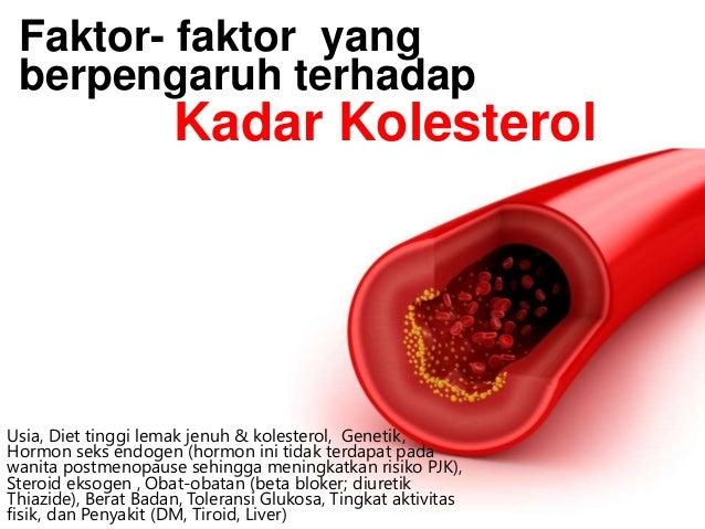 Diet Pencegahan Penyakit Jantung Koroner