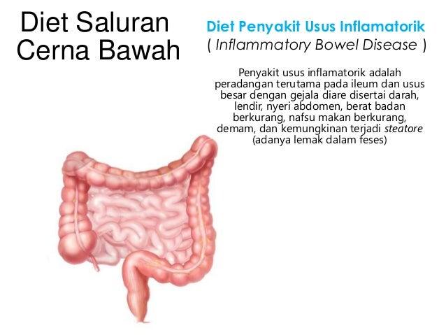 Diabetes Dpp 4 Ppt 2019