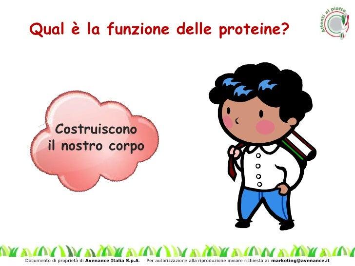 Modulo 1.video multimediale_parte_4.proteine