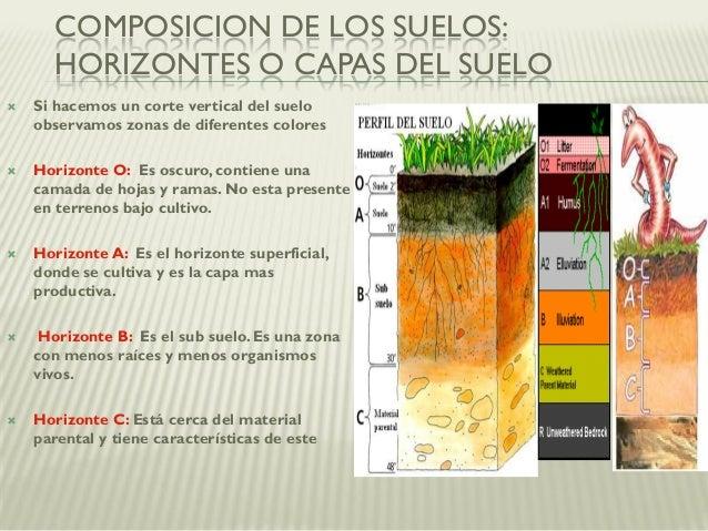 Modulo 28 la importancia del suelo for A que se denomina suelo