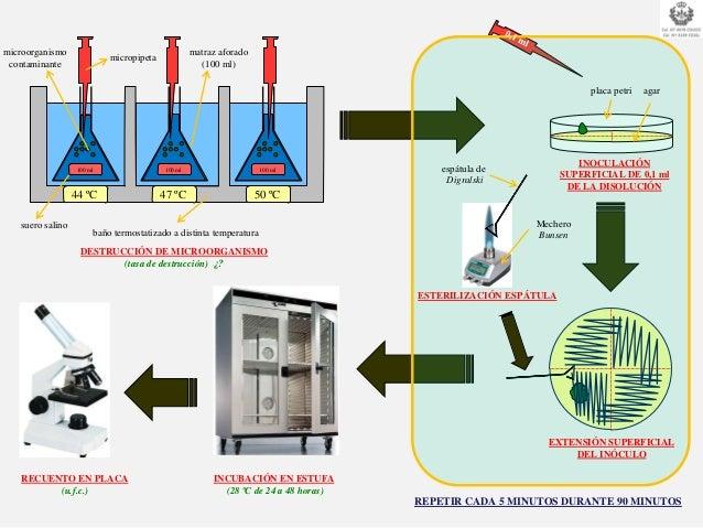 MODULO 4: Procesos De Conservación de Alimentos