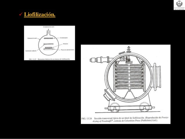 La introducción de las hortalizas en la salmuera debe realizarserápidamente tras su recepción, pesado y clasificación.Para...