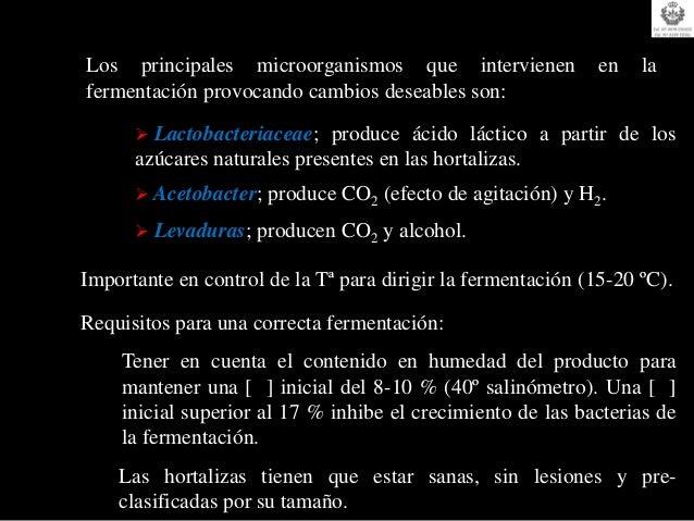No FermentaciónMateria Prima                Fermentación ácido-láctica (anaeróbica)