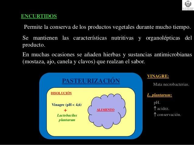 ATMÓSFERA MODIFICADA / VACÍO  Método de conservación de alimentos muy práctico y sencillo.  Mantiene la frescura del produ...
