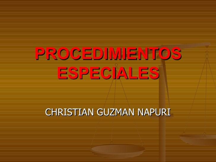 CHRISTIAN GUZMAN NAPURI PROCEDIMIENTOS ESPECIALES