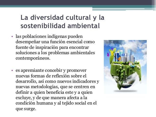La diversidad cultural y la  sostenibilidad ambiental  • las poblaciones indígenas pueden  desempeñar una función esencial...