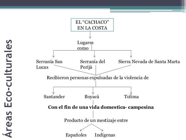 """EL """"CACHACO""""  EN LA COSTA  Lugares  como  Serranía San  Lucas  Serranía del  Perijá  Sierra Nevada de Santa Marta  Recibie..."""