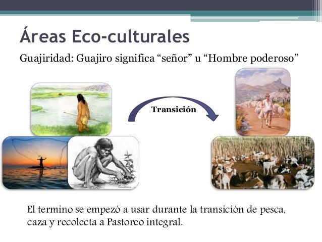 "Áreas Eco-culturales  Guajiridad: Guajiro significa ""señor"" u ""Hombre poderoso""  Transición  El termino se empezó a usar d..."