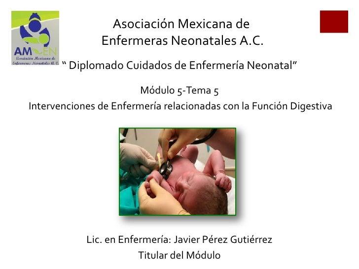 """Asociación Mexicana de               Enfermeras Neonatales A.C.       """" Diplomado Cuidados de Enfermería Neonatal""""        ..."""