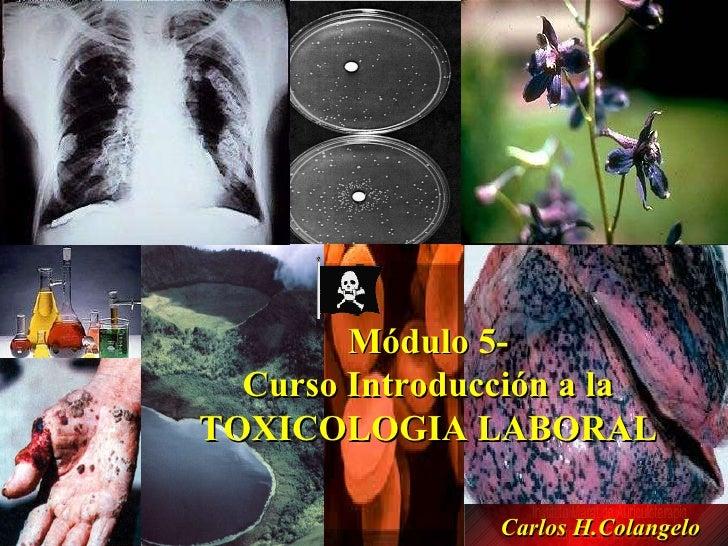 Módulo 5-  Curso Introducción a la  TOXICOLOGIA LABORAL  Carlos H.Colangelo