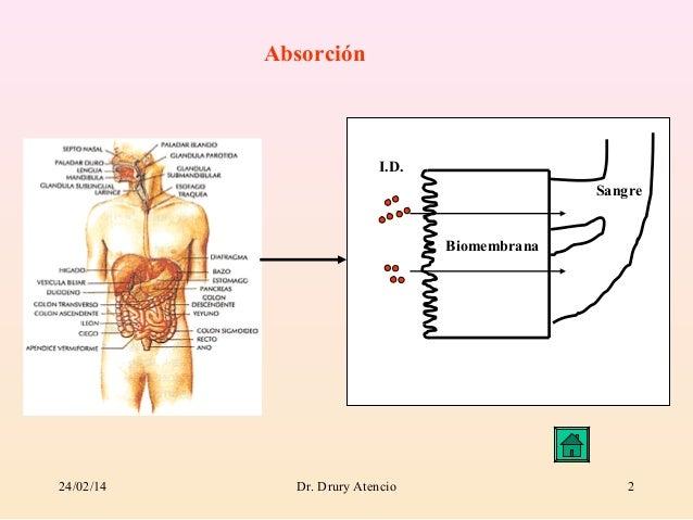 Modulo absorcion Slide 2